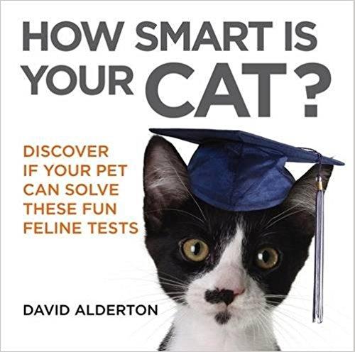HOW SMART IS YOUR CAT