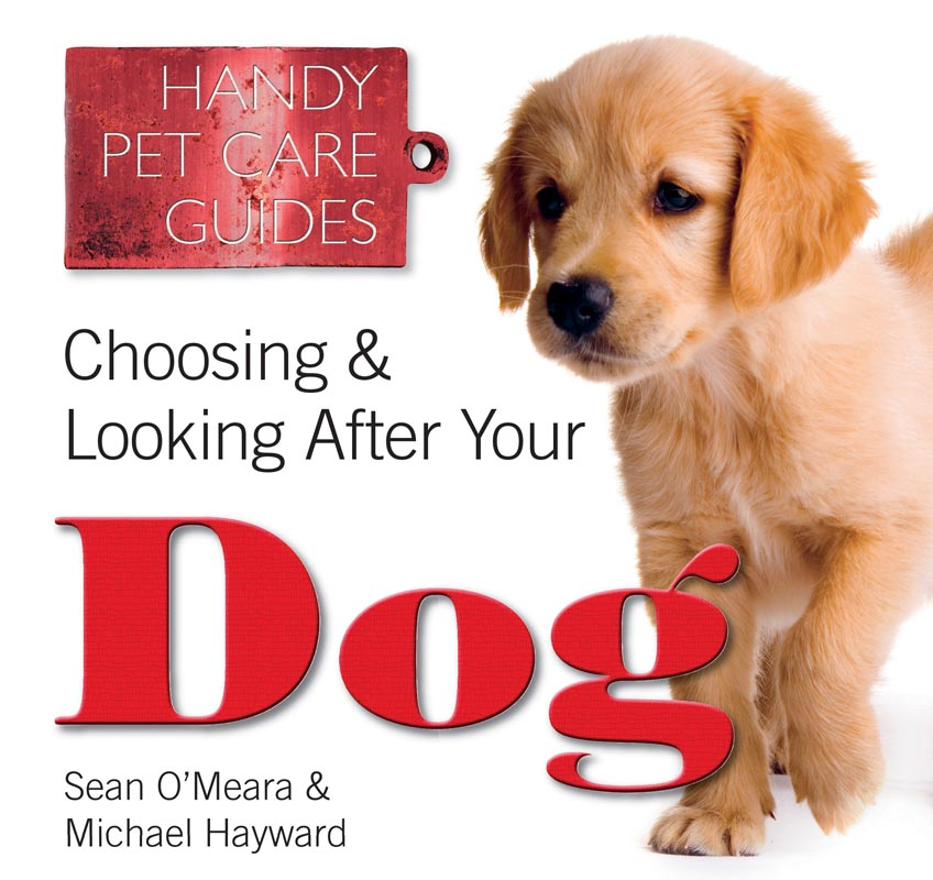 CHOOSING AND LOOKING AFTER YOUR DOG