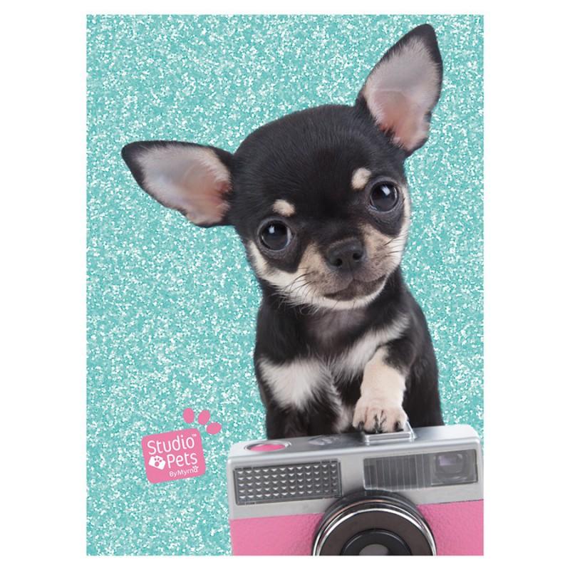 Dnevnik A6 - Pets
