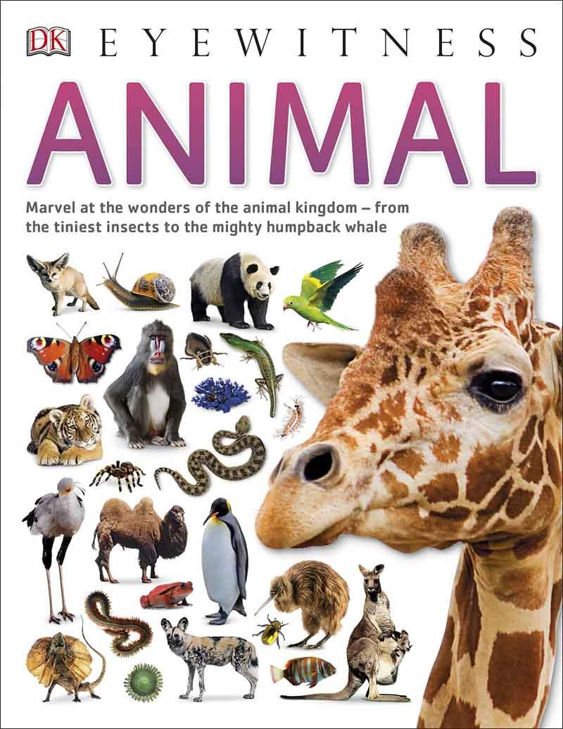 ANIMAL EYEWITNESS