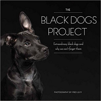 THE BLACK DOG PROJECT