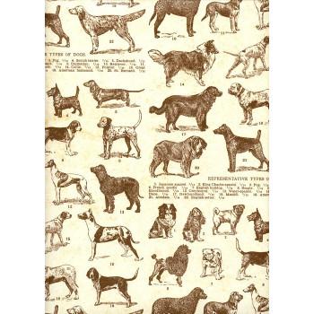Ukrasni Papir  DOGS