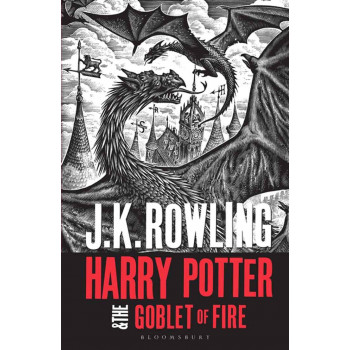 HARRY POTTER AND THE GOBLET OF FIRE adult