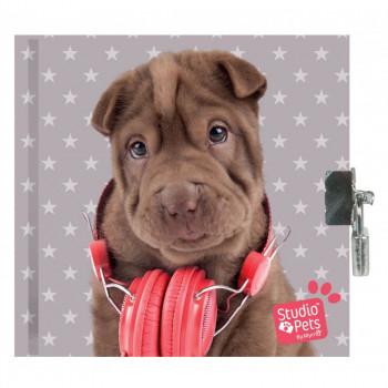 Dnevnik sa katancem - Pets