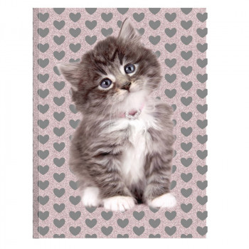 Dnevnik A6 CAT Gliter