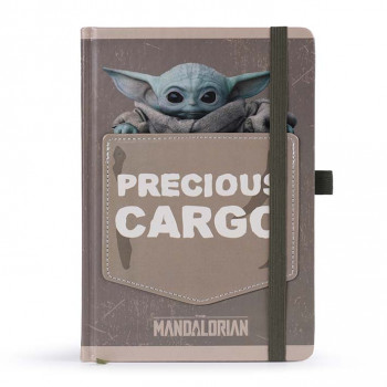 Notes  THE MANDALORIAN PRECIOUS CARGO