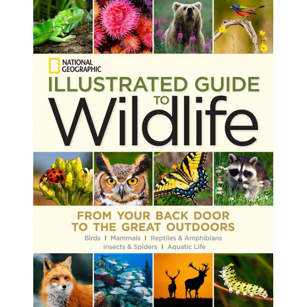 ILLUSTRATED GUIDE TO WILDLIFE