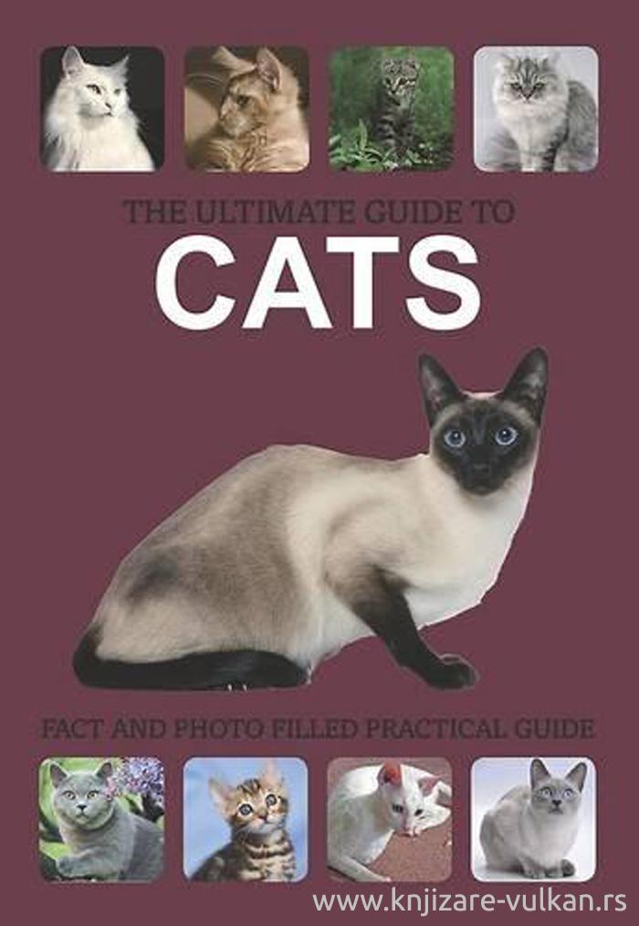THE ULTIMATE GUIDE TO CATS
