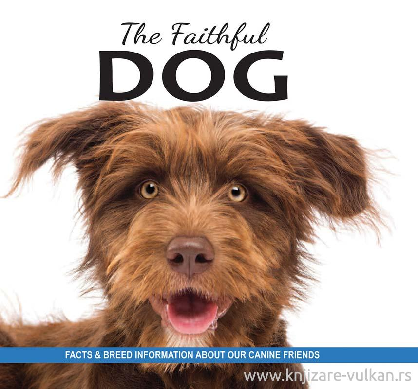 THE FAITHFUL DOG