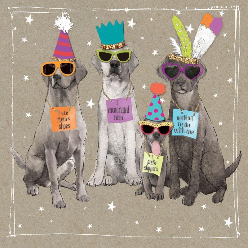 Rođendanska Čestitka FANCY PANTS FOUR PARTY DOGS