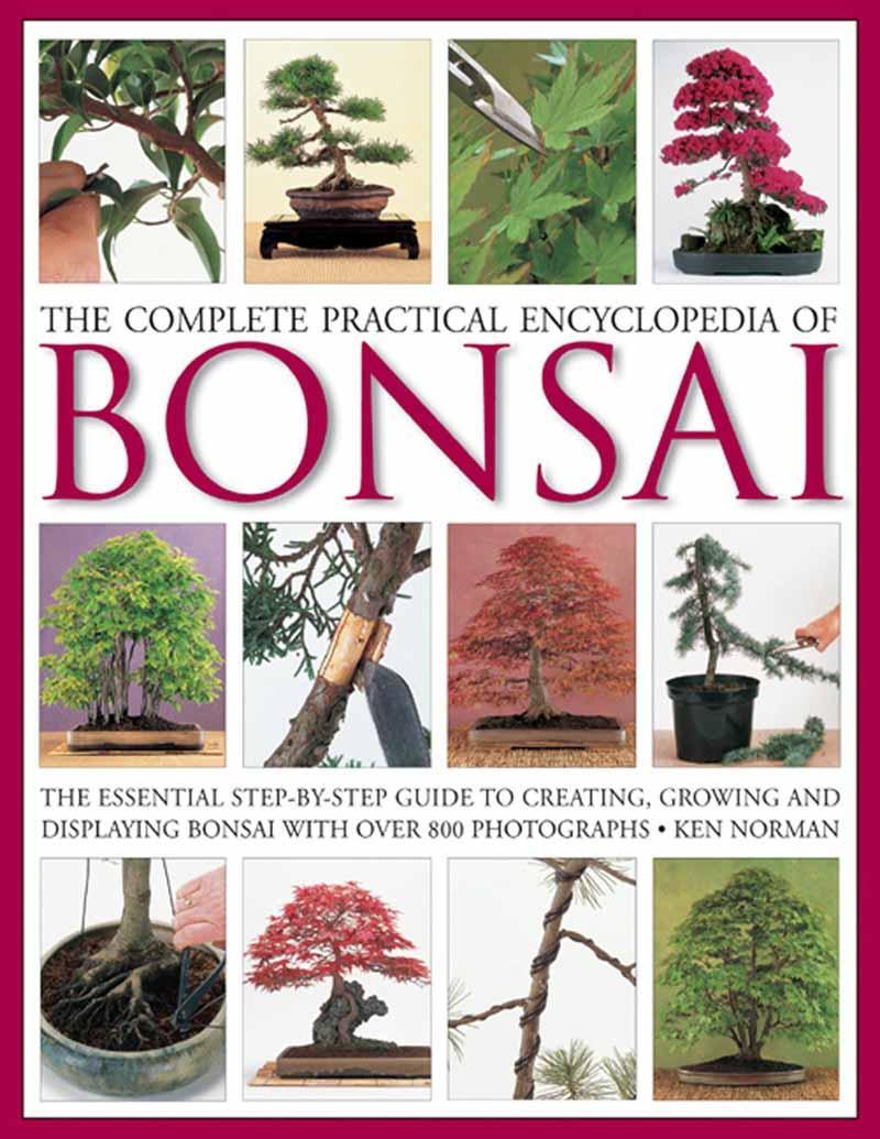 THE BONSAI HANDBOOK