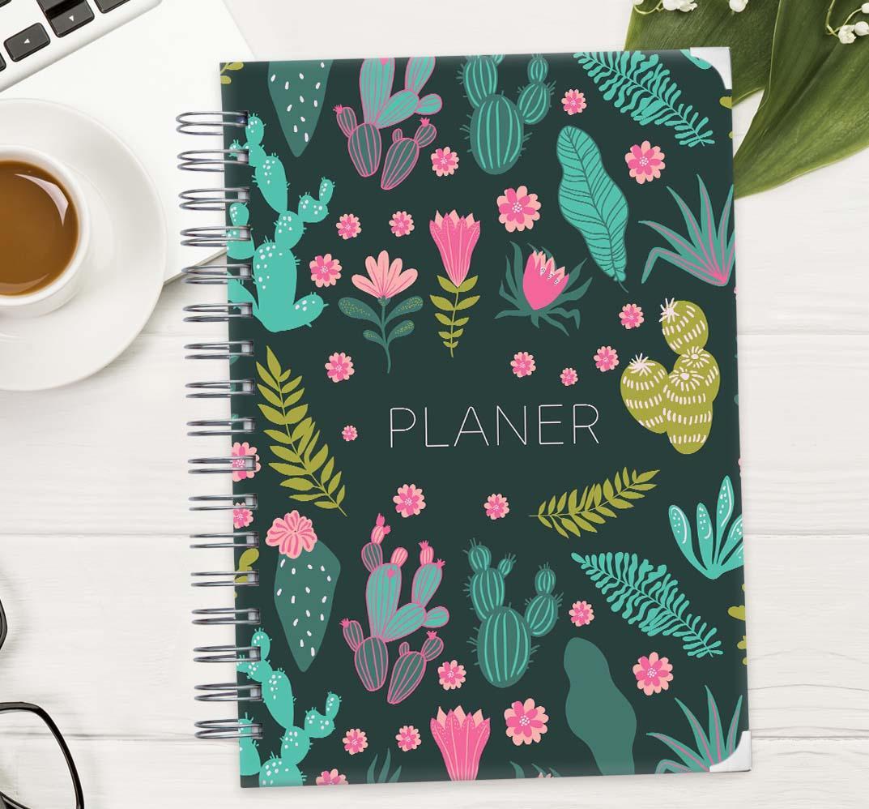 PLANER Kaktusi